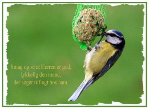 Smag og se at Herren er god.....