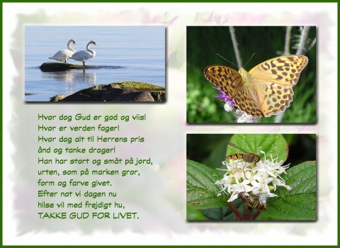 Hvor dog Gud er god og viis.